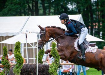 Medikation von Sportpferden